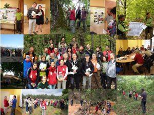 Διαχείριση μεσογειακών δασών του Δικτύου Natura 2000