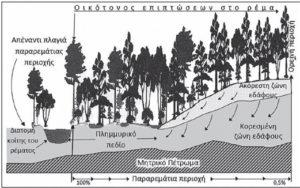 Εικόνα που δείχνει τις υδρολογικές λειοτουργίες των παραρεμάτιων περιοχών από Μπαλούτσος κ.ά. 2017.