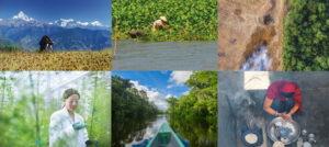 Σύνθεση φωτογραφιών για τη χρήση υφτών και μυκήτων
